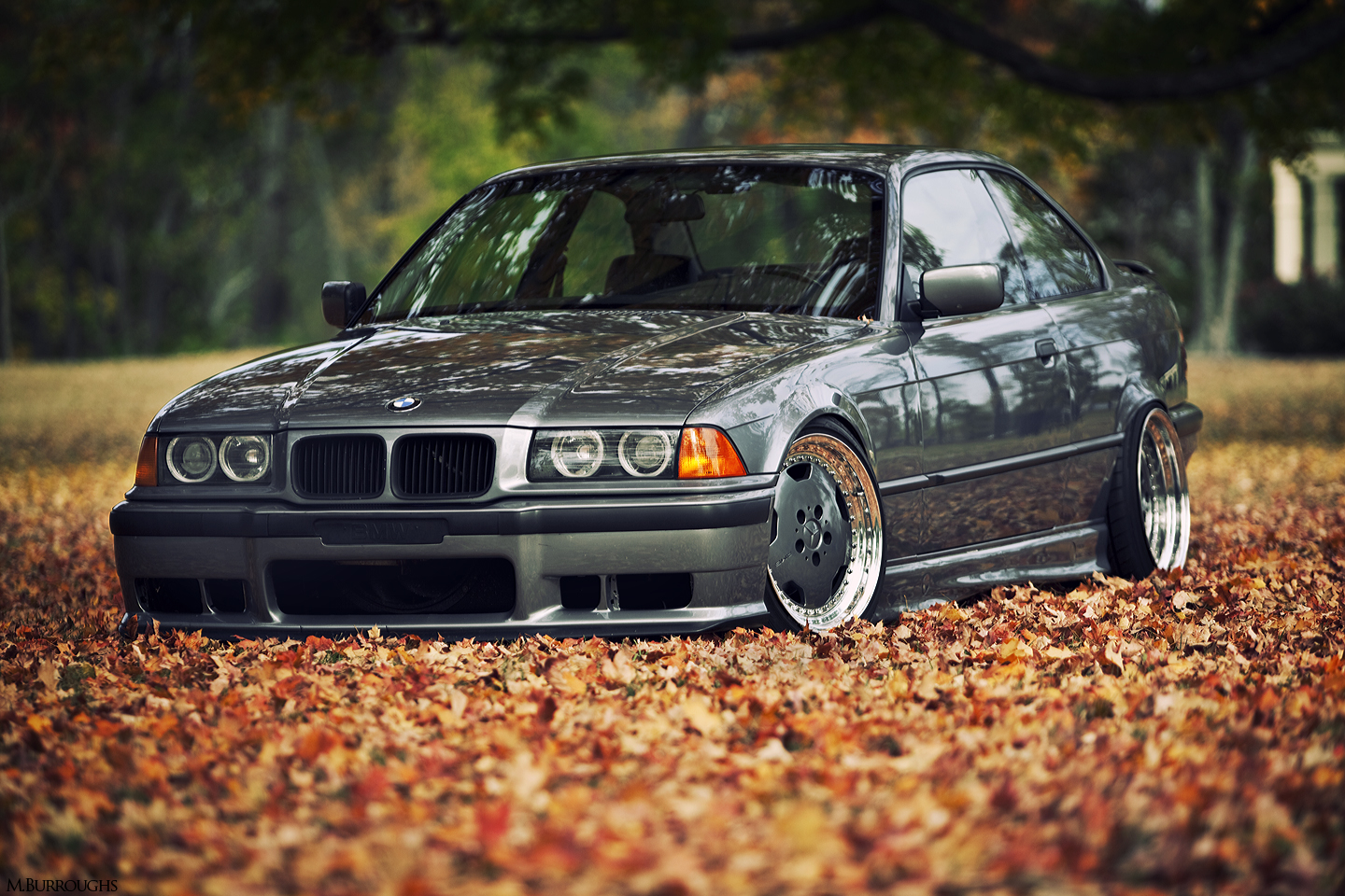 In the Autumn Leaves [E36]