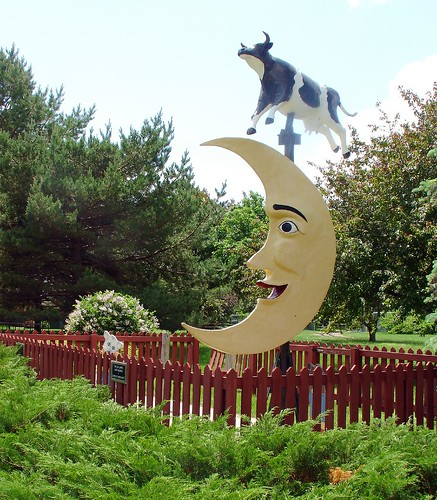 Cow Jumping over the moon- Photo by dacotahsgirl