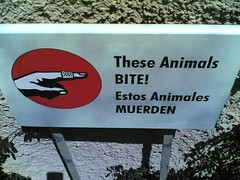 These Animals BITE!
