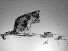 Catinkdrawing.jpg
