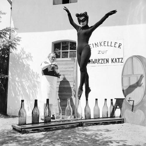 la gata sobre botellas de vino...