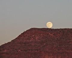 Moonrise 11-04-06