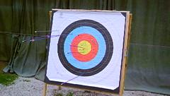 archery shots