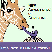 New Adventures of Christine