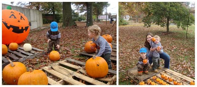 Pumpkin collage 2009_3