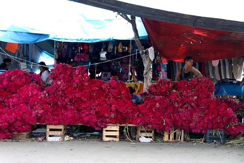 171.FloresDienteDeLeon