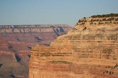 Grand Canyon #21
