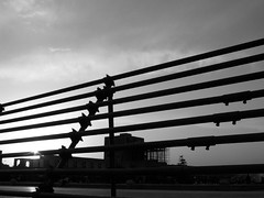 (kian1) Tags: irani iranian iraniha isfahan meydan naghshejahan alighapu apadana spadana sad ahmadinejad ايران ايراني ايرانيان اصفهان اصفهاني سپاهان صفاهان آپادانا ميدان اسپادانا نقشجهان عاليقاپو ماخ كاخ صفوي صفويه سفرهاياستاني احمدينژاد خرداد persian pras persia esfahan iran