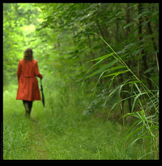 Marit walking in the forest (Sybren A. Stvel) Tags: green contrast forest walking marit beautifulcapture lens:type=1755mmf28isusm
