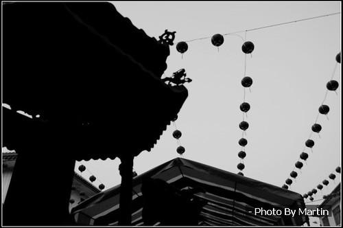 Lantern Festival / 元宵節 - 乞龜