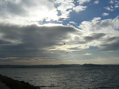 costa coruesa (gandalf 3.0) Tags: costa mar corua gaviotas