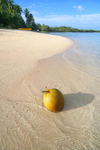 Floating nut