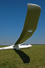 Duo Discus (Laurent CLUZEL) Tags: aviation duo glider discus sailplane planeur ask21