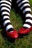 365-283 Ding Dong The Witch Is Dead (TXAlleKat) Tags: feet socks d50 50mm nikon stripes sp wizardofoz 50mmf18d redshoes kneehighsocks 365days 365explored tagalicioustaginess clemjustwantsthesocksoffandtorollinthehay blacksocksandsandalsarehot thetrialrockseveryonessocks orlayinthegrass