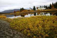 Þingvallakirkja / the church at Thingvellir (Brynja Eldon) Tags: park trees red reflection green nature water yellow river iceland flora national haust thingvellir Ísland autunm Þingvellir lyng Þingvallakirkja valhöll kjarr