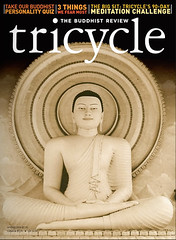 Tricycle Cover 2009