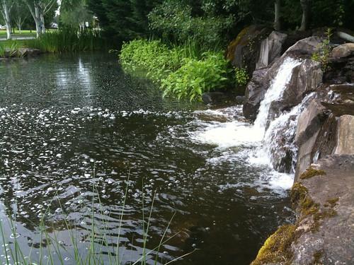 Columbia Tech Center Trails, Waterfalls & Ponds