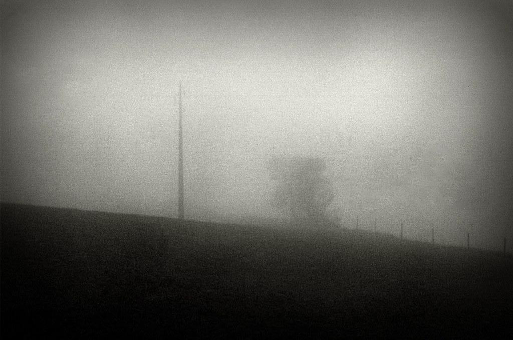 Mists #00270019