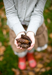 It's Official... (Morphicx) Tags: autumn bokeh emma ladybug 5d wellies deventer pinecones 50mmf14 redwellies ladybugwellies