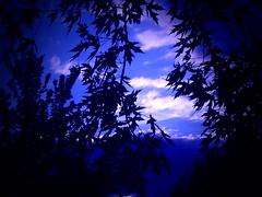 Rverie bleue (***Isabelle***) Tags: naturesfinest wowiekazowie