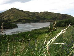 New Zealand South Island . (1083) (pjwar) Tags: newzealand southisland pjwar