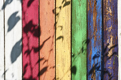 Shadows on a coloured fence 2061 - by Yukon White Light