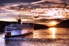 BC Ferries (WakamouL) Tags: sunset sea canada bird clouds lafotodelasemana atardecer mar victoria ave nubes hdr ferrie abigfave ltytr1 superbmasterpiece flickrphotoaward gpcompaisajes gpcomseptiembre gpcomefectos lfs092007