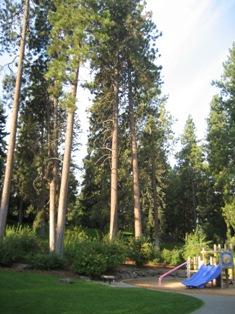 Spokane_2007_Manito