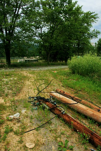 Downed telephone poles near a storage shed