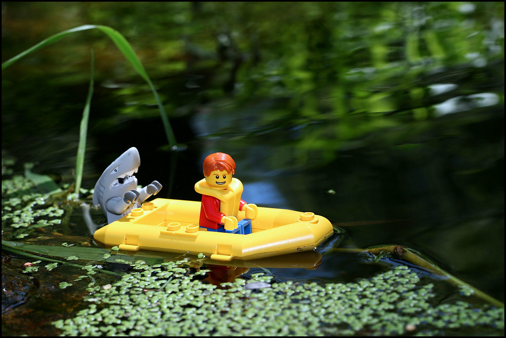 Lego Shark Toys For Boys : The world s best photos by djfargo flickr hive mind