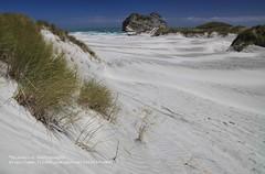Wharariki Beach (blauepics) Tags: new sea seascape water strand landscape island coast sand meer wasser south zealand gras landschaft aotearoa neuseeland küste südinsel visipix