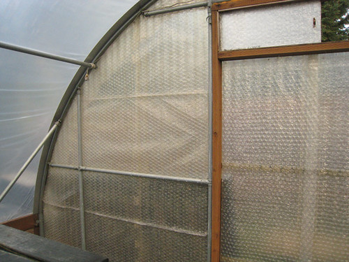 Bubblewrap insulation in Greenhouse