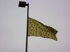 Weird flag