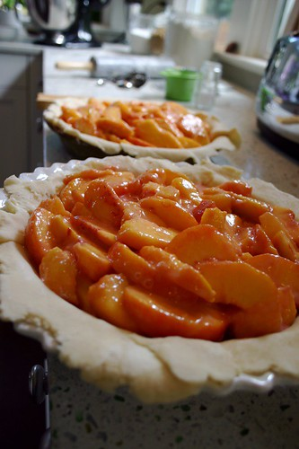 peach pies in the making