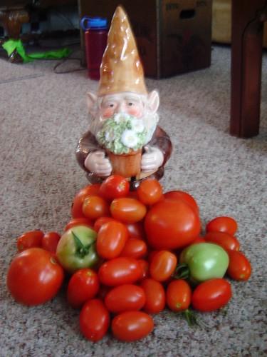 I bringeth Tomatoes