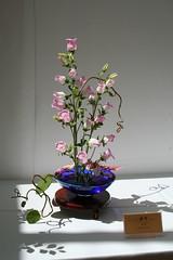 ikebana (Cindy シンデイー) Tags: flower tower festival garden botanical japanese grove ikebana mo missouri shaws arranging henryshaw httpwwwmobotorg