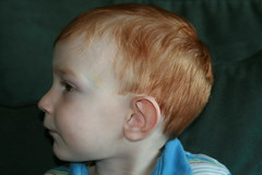Kade's Haircut II