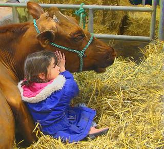 Farm Show Friends