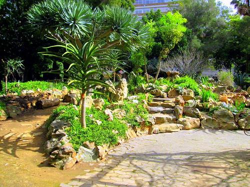 Thumbnail from Company's Garden