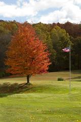 Massachusetts Fall Colors 10/22/10