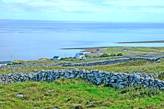 isole aran - irlanda (Filippo1964) Tags: ocean uk travel flowers ireland england sky panorama horse dublin cliff flower english tourism foglie digital garden dark europa europe natural unitedkingdom kingdom irland cliffs erba lingua foglia language cliffsofmoher mucca prato aran granbretagna aranislands pelouse dublino irlanda irlande oceano inglese inghilterra pecore iles mucche europ bretagna dubln isole daran pecora oceanoatlantico isolearan ilesdaran pratoverde cielodirlanda scoglieredimoher irlandadelsud daarklands middleeastpublicgeoreferenziata irlandedusud