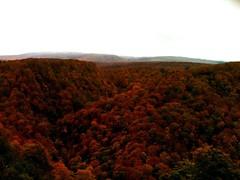 秋の栗駒-3-