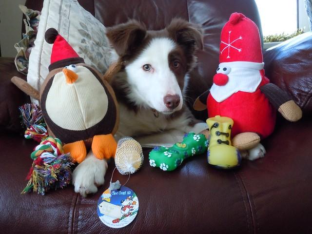 2010年圣诞节(7)
