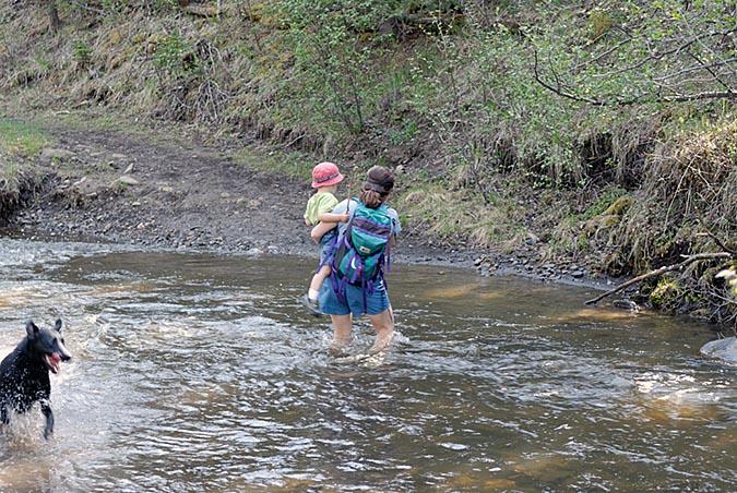 Creek crossing3727