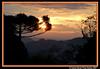 Sunset ! (crenan) Tags: world sunset sol me sunrise d50 interesting nikon do calendar time photos fast sunsets explore santamaria around sunrises score coolest pôr naturesfinest blueribbonwinner pôdosol sunsettime tonights fotoclube tonightssunset d80 citysunsets scoremefast câmeradeourobrasil goldenphotographer sunsetdreams~endlesssunrise sunsetdreams crenan grupo1a10brasil visãofotográfica carlosrenanpiressantos