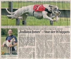 Zeitungsartikel Indy