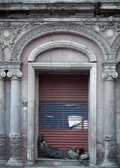 ... (Carlows) Tags: mxico mexico federal distritofederal pobreza distrito vagabundo