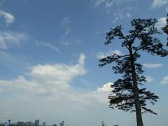 DSCF3123.JPG (piouhgd) Tags: sendai matsushima finepixs9100 2007081921