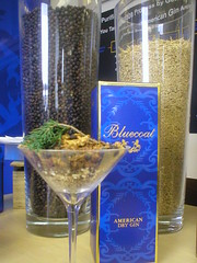 Blue Coat Gin with Botanicals