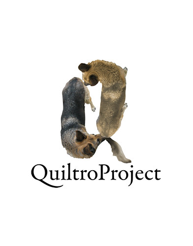 """QuiltroProject • <a style=""""font-size:0.8em;"""" href=""""http://www.flickr.com/photos/8565265@N03/1321864305/"""" target=""""_blank"""">View on Flickr</a>"""